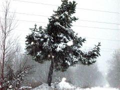 А за городом зима, зима, зима....jpg