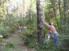Санитары леса :)))