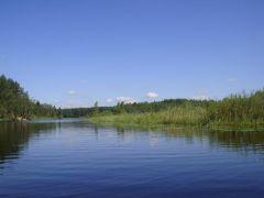 Протока Полоновка, вид из байдарки