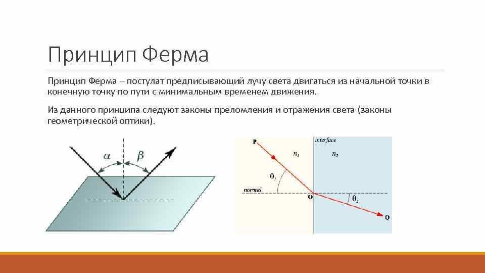 -76451133_427898085.pdf-7.jpg.a2ce36363b474f7e7d4105c1f65769e7.jpg